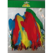 Plumes d'oie colorées assorties 15g